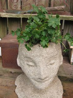 Diy - How to make your own head planters on the cheap! Thanks to the Soil Sister of the San Joaquin: The Head Gardeners