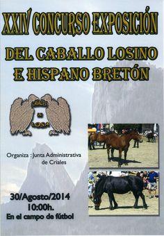 30/8 Feria del Caballo Losino. Criales de Losa