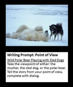 what point of view is a narrative essay Composing a narrative essay and writing a narrative paragraph anecdote whether it comes from a personal experience or is one that the writer has imagined, the point of a narrative is to bring one's subject to life by using sensory what are the different points of view in narratives.
