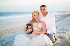 Jessica + Eric : Trash the Dress! Photo By Tami Melissa Photography, LLC Beach Post Wedding Day After Cape May, NJ Congress Hall Dog Family Photo Animal Photography Chihuahua