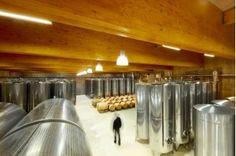 Our big cellar