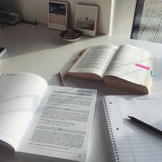 School Organization Notes, Study Organization, School Notes, Study Board, Work Motivation, Study Space, Study Inspiration, Studyblr, Study Notes
