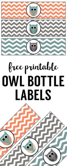 Great for owl birthday party theme or owl baby shower theme party. Print the owl water bottle wrappers and tape to a bottle. Owl Parties, Owl Birthday Parties, Owl Themed Parties, Birthday Games, Birthday Stuff, 2nd Birthday, Boy Baby Shower Themes, Baby Shower Parties, Party Themes For Boys