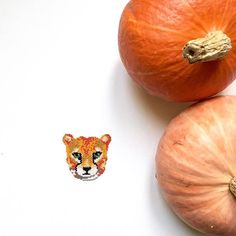 happy halloween friends meet my new babe sweet pumpkin guepard hours of work