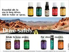 Ouls to help stay awake while driving & to help stressed muscles