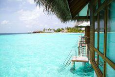 A Maldivian Adventure on Maafushivaru.