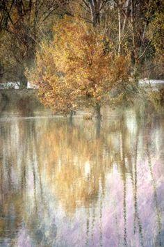 Alluvione by Francesca Ferrari