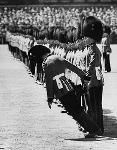 13 June 1957: A guardsman faints during the Trooping the Colour ceremony on Horse Guards Parade. Old Pictures, Old Photos, Vintage Photos, Life Magazine, Black White Photos, Black And White Photography, Photo Black, Horse Guards Parade, Perfect Timing