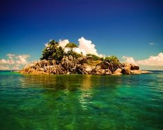 Garden of Eden, North Island; Seychelles.... Best snorkeling spot