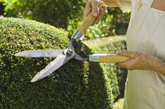 For a top-grade landscape maintenance, reach J Kidd Yard Work & Home Improvement at Located in Lincoln, RI, with us, your satisfaction is ensured every time. Lawn And Landscape, Landscape Services, Landscape Plans, Landscape Designs, Landscape Architecture, Landscaping On A Hill, Landscaping Company, Backyard Landscaping, Landscaping Ideas