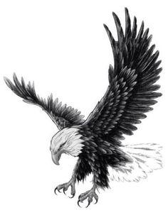 Trendy Ideas tattoo bird eagle wings – New Ideas Wing Tattoo – Fashion Tattoos Tattoos 3d, Feather Tattoos, Animal Tattoos, Trendy Tattoos, Body Art Tattoos, Tattoos For Guys, Tattos, Feminine Tattoos, Celtic Tattoos