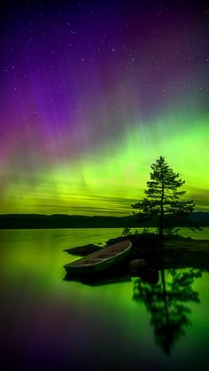 Aurora Reflections - Earl grey with lavender - Re-Wilding Aurora Borealis, Beautiful Sky, Beautiful Landscapes, Nature Pictures, Cool Pictures, Landscape Photography, Nature Photography, Scenic Photography, Northen Lights
