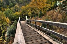Staircase_North_Saskatchewan_River_Valley_Edmonton_Alberta_Canada_01.jpg (3888×2592)