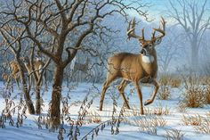 Winter Sunrise - whitetail deer painting by Larry Zach