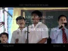 Grupo Andino   Hay tristezas en mi alma T D A 2010