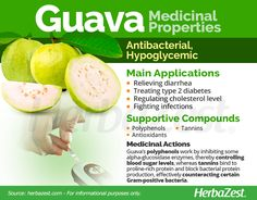 Guavas are a widely consumed fruit because of their sweet taste. Its leaves and bark are also full of nutrients and health benefits. Guava Health Benefits, Herbal Remedies, Health Remedies, Guava Fruit, Guava Leaves, Fruit Nutrition, Biology, Charts, Herbalism