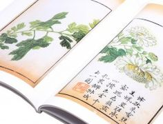 Chinese Painting & Brush Painting books that are easy to use