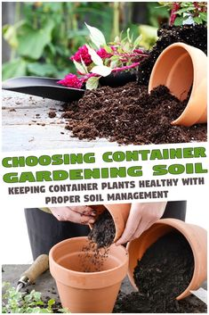 Choosing container gardening soil is one of the first and most basic decisions container gardeners face. New container gardeners will most likely go o...  #containergardeningsoil #containerplants #healthyplants #pottingsoil #propersoil