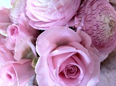 Dreaming of summer! Deco, Rose, Flowers, Plants, Summer, Pink, Summer Time, Decor, Deko