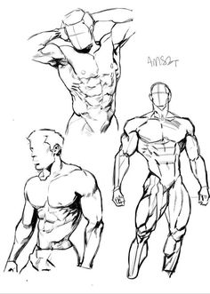 Exceptional Drawing The Human Figure Ideas. Staggering Drawing The Human Figure Ideas. Anatomy Sketches, Anatomy Art, Anatomy Drawing, Drawing Sketches, Drawings, Comic Drawing, Human Figure Drawing, Figure Drawing Reference, Body Drawing