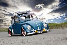 low rider beetle