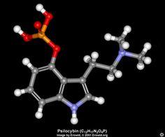 psilocybin
