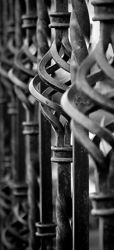 Wrought Iron Fence by supirvillain, via Flickr