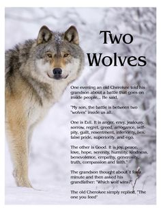 """The Story of Two Wolves...  An old Cherokee told his grandson,  """"My Son, there is a battle between two wolves inside us all.   One is Evil. It is anger, jealousy,  greed, resentment, inferiority,  lies and ego. The other is Good.  It is joy, peace, love, hope, humility,  kindness, empathy and truth.""""  The boy thought about it, and asked,  """"Grandfather, which wolf wins?""""  The old man quietly replied,  """"The one you feed.""""  ~ Author Unknown http://Thanks2net.com/"""