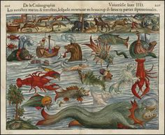 """Sebastian Munster 1550. """"Munster's plate of monsters of both land and sea, taken from Olaus Magnus' """"Carta Marina"""" of 1539"""