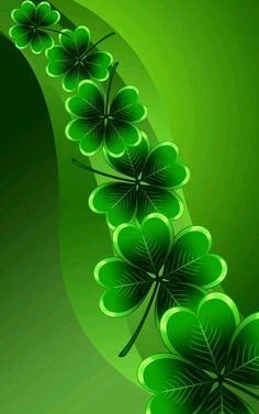 Clover leaf                                                       …