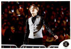 EXO-L Japan : Limited Photoset - Kai