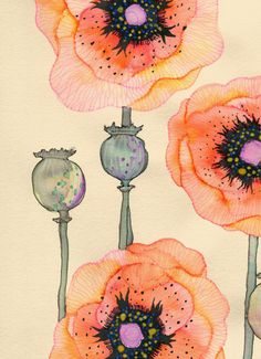 Colleen Parker - Inks & Watercolours