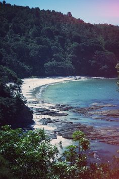 Otarawairere Bay, Ohope -- near Whakatane, NZ. . . . a beautiful spot, surrounded by bush (forest).