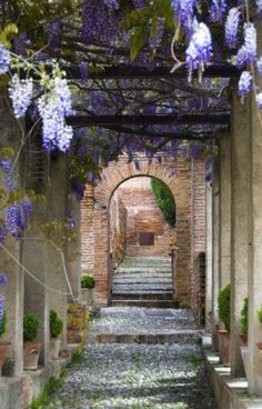 Jardines del Generalife, Granada, Andalucía, Spain