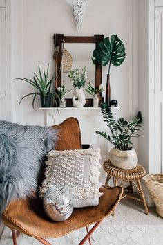 Plant Shelfie And H&