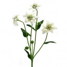 134 best artificial flowers images on pinterest artificial indoor this artificial edelweiss flower spray measures 30cm from top to bottom and features four soft white mightylinksfo