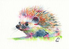 Spikey - Original Watercolor Painting - Hedgehog / Animal - By Richard Warwick