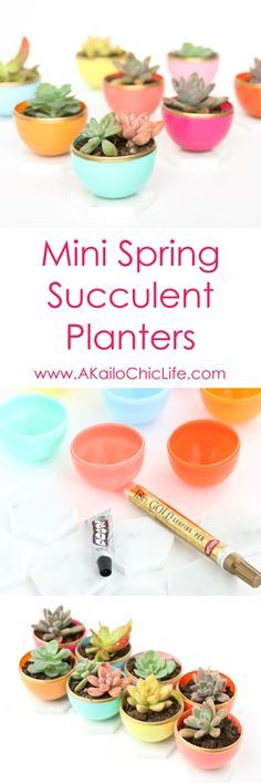 Mini Spring Succulent Planters using old plastic Easter eggs and marble tile with gold accents - Easy DIY Craft