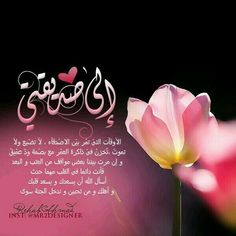 Arabic Language Islamic Pictures Islam Quran Sweet Words English Quotes Friendship