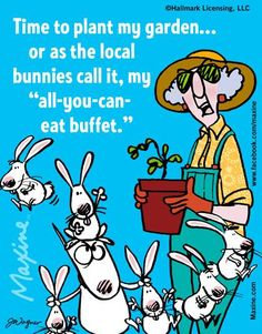 As one who gardens just a wee bit, I can appreciate the sentiment in this Maxine…