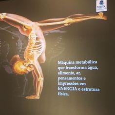 O corpo é uma máquina metabólica que transforma água, alimento, ar, pensamentos e impressões em energia e estrutura física saúde energia vital força corpo