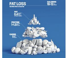 Our official nutrition guidelines for fat loss and muscle building.