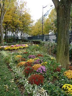 Scènes d'automne dans le jardin Rachmaninov (Paris 18e) http://www.pariscotejardin.fr/2012/11/scenes-d-automne-dans-le-jardin-rachmaninov-paris-18e/