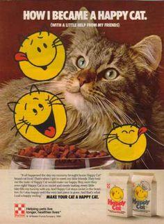 Low Protein & Low Phosphorus Cat Food Reviewed Cat food