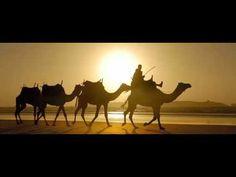 Kervan Kervan Güzel Kervan Develeri Dolu Kervan - YouTube Camel, Youtube, Animals, Animales, Animaux, Animal Memes, Animal, Animais, Bactrian Camel