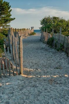 Cold Storage Beach Dennis MA -