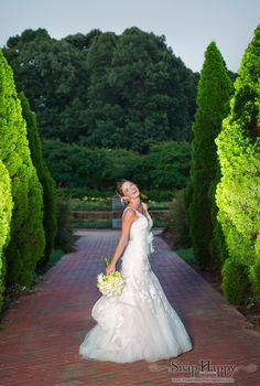 The Iris Garden at Memphis Botanic Gardens