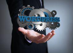 Wordpress universum