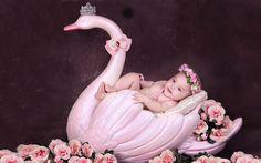 Đạo cụ chụp ảnh bé: thiên nga hồng Thiết Bị Ngành Cưới Cama Newborn Photo Props, Newborn Photos, Baby Photos, Accessoires Photo, Muslin Backdrops, Baby Hands, Swan, Hand Painted, Watch