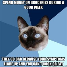 Bipolar. Bipolarbipolarbipolar. Manic enough to buy ALL the food, then too depressed/suicidal to cook.